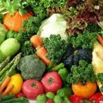 Afrikind Foundation Food Program
